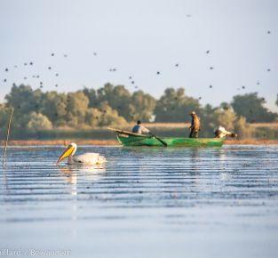 Diavortrag - mit dem Packraft durch das Donaudelta